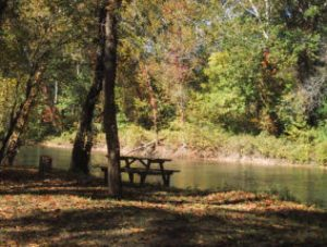 Sweet Water Primitive Camping